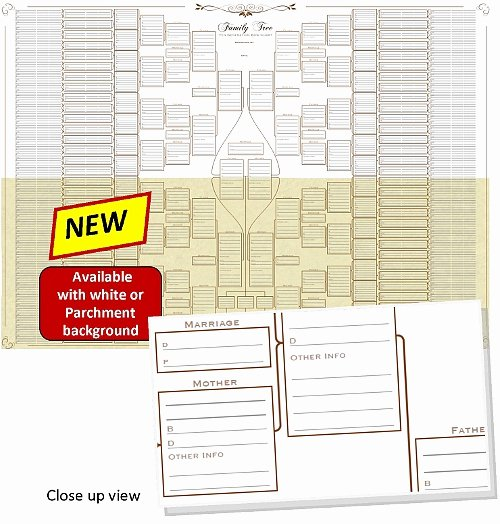 10 Generation Family Tree Fresh Blank Family Tree Charts