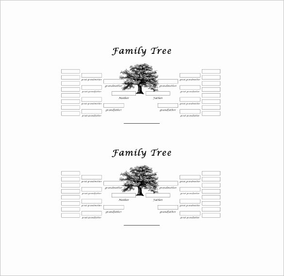 10 Generation Family Tree Luxury Five Generation Family Tree Template – 11 Free Word Excel Pdf format Download