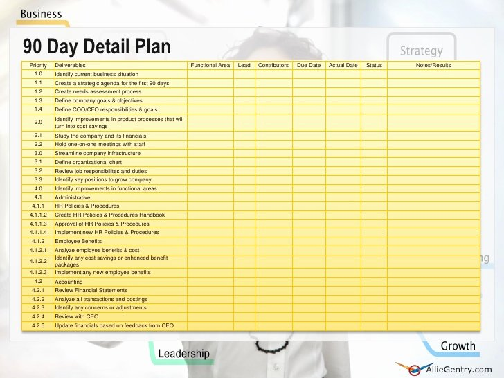 100 Day Plan Template Fresh Chief Operating Ficer 90 Transition Plan
