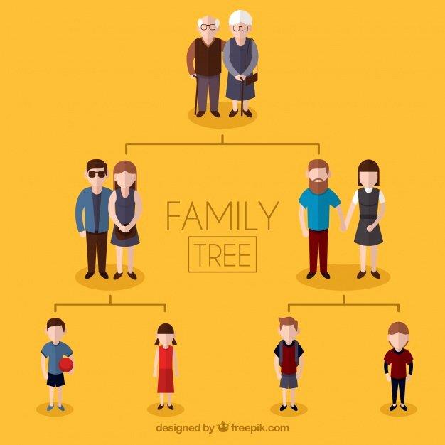 3 Generation Family Trees Fresh Family Tree with Three Generations Vector