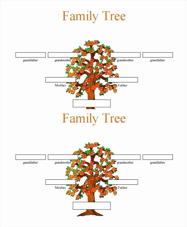 3 Generation Family Trees Lovely Template 3 Generation Genogram Template