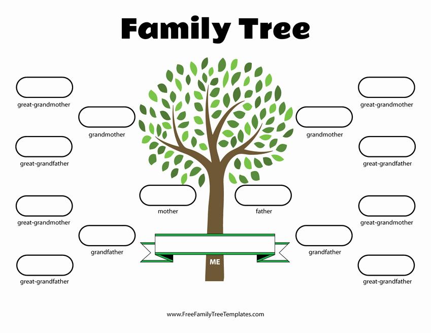 3 Generation Family Trees Unique 4 Generation Family Tree Template – Free Family Tree Templates