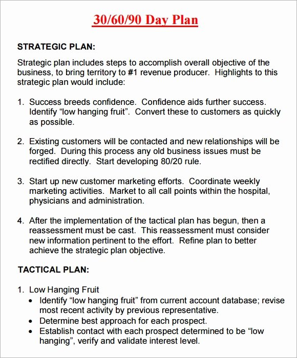 30 60 90 Day Template Elegant 20 Sample 30 60 90 Day Plan Templates In Google Docs Ms Word Pages