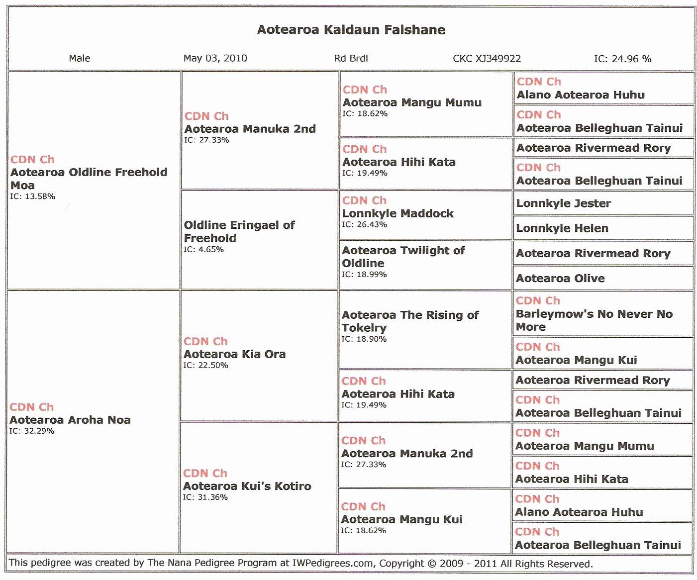 4 Generation Pedigree Chart Luxury Falshane