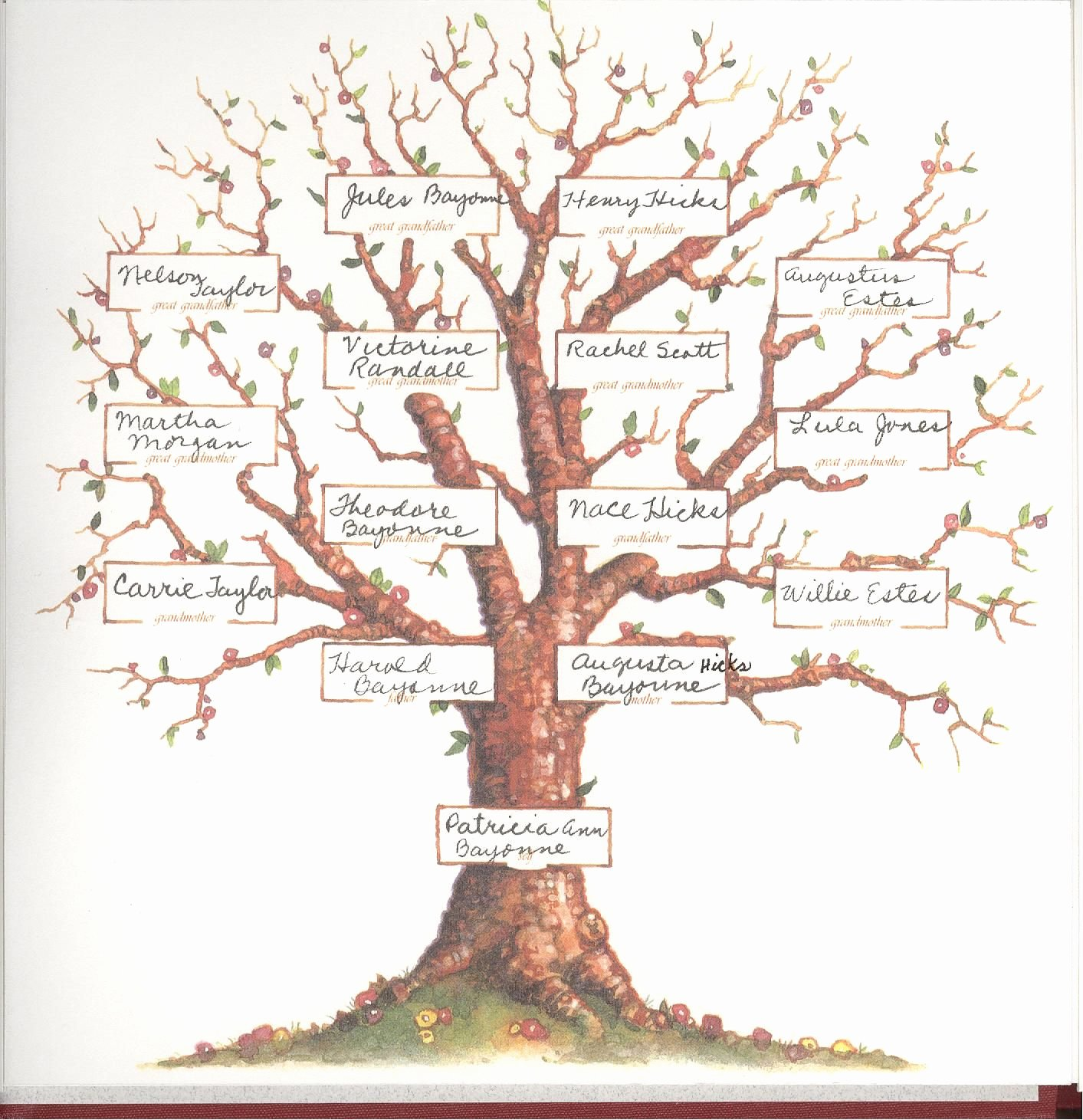 7 Generation Family Tree Template Awesome Blank Family Tree 4 Generations Pat S Family Tree Projects to Try Pinterest