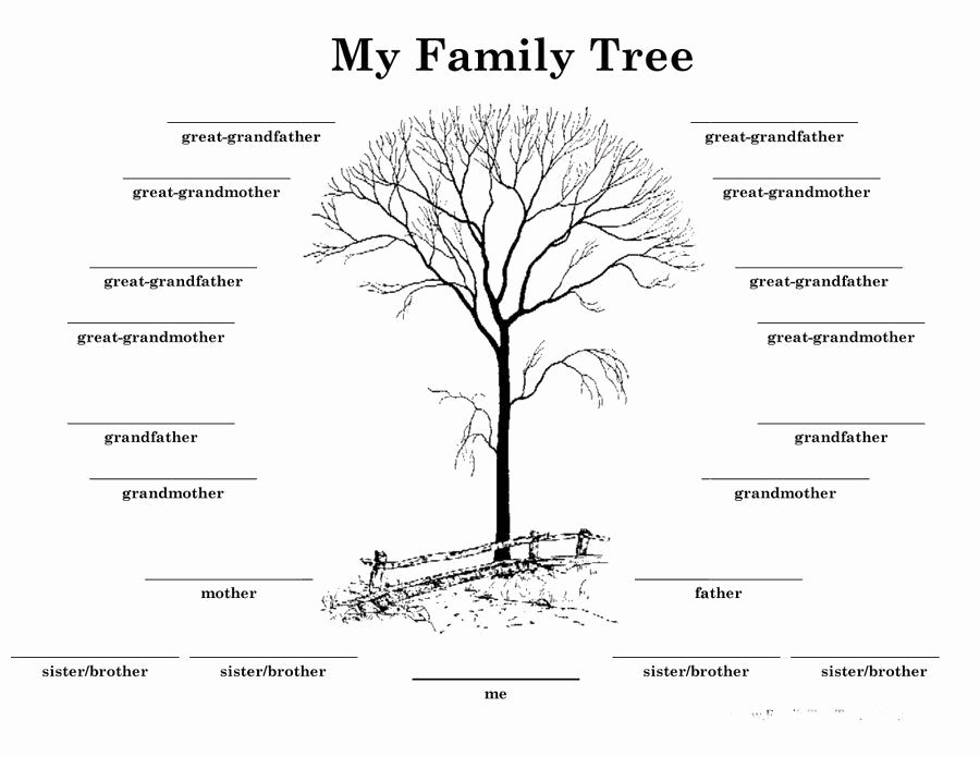 8 Generation Family Tree Template Awesome Download Family Tree Template 13