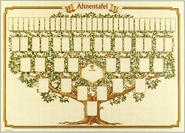 8 Generation Family Tree Template Best Of Best 25 Family Tree Drawing Ideas On Pinterest