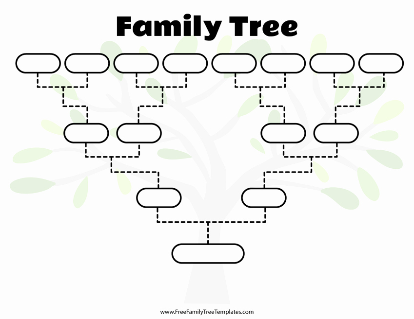 8 Generation Family Tree Template Luxury Free Family Tree Templates for A Projects