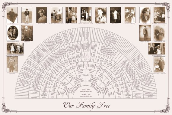 8 Generation Family Tree Template New Custom Family Tree 20x30 8 Generation Fan Chart