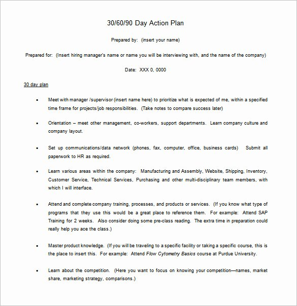 90 Day Action Plan Template Elegant 12 30 60 90 Day Action Plan Templates Word Pdf Apple Pages