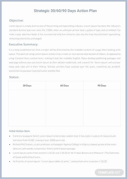 90 Day Action Plan Template Elegant 30 60 90 Day Professional Development Plan Template In Microsoft Word