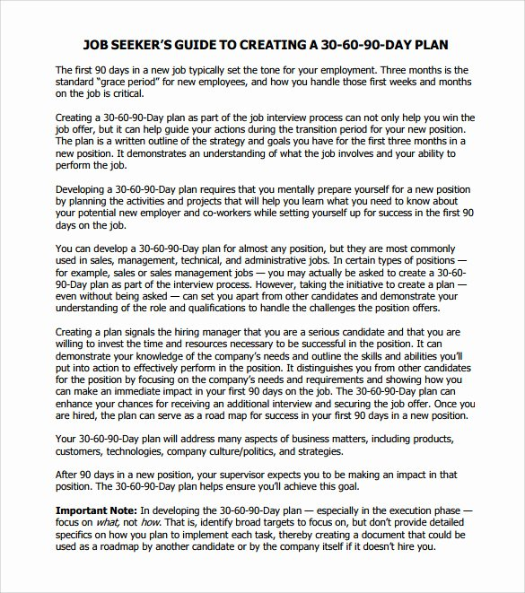 90 Day Action Plan Templates Luxury 30 60 90 Day Action Plan 12 Documents In Pdf Word
