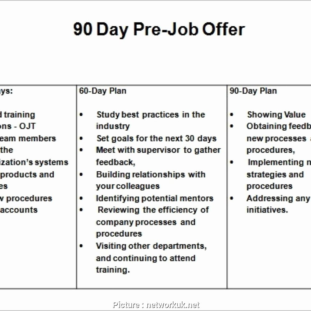 90 Day Business Plan Template Lovely 10 30 60 90 Day Plan Sales Manager Example
