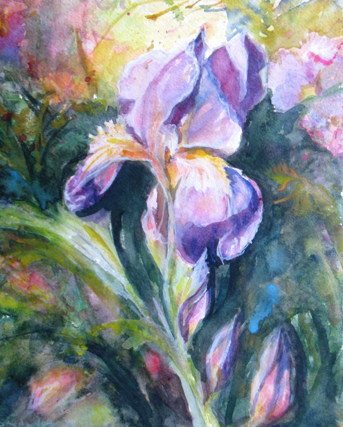Abstract Painting Of Flower New Abstract Iris original Watercolor Painting Flowers Garden