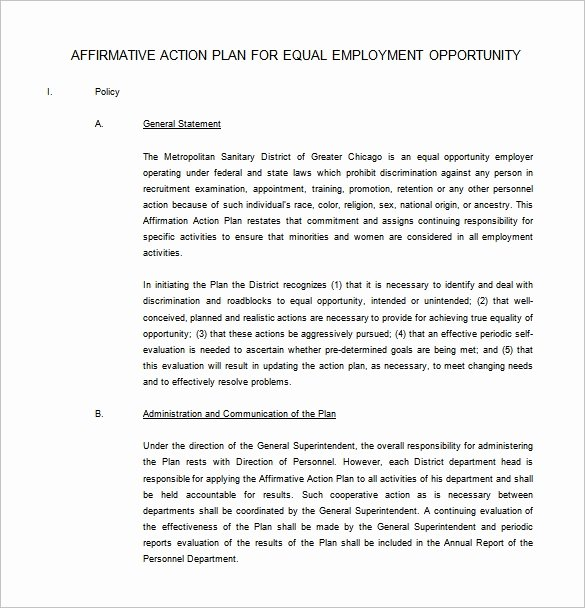 Affirmative Action Plan Sample Awesome 6 Affirmative Action Plan Templates Doc Pdf