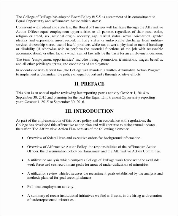 Affirmative Action Plan Sample Luxury Sample Affirmative Action Plan 9 Examples In Word Pdf