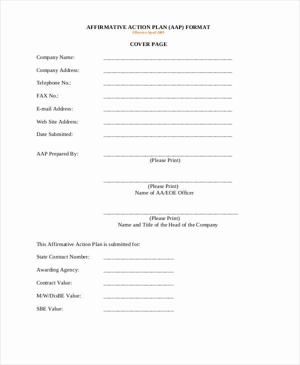 Affirmative Action Plan Template New 35 Sample Plan Templates