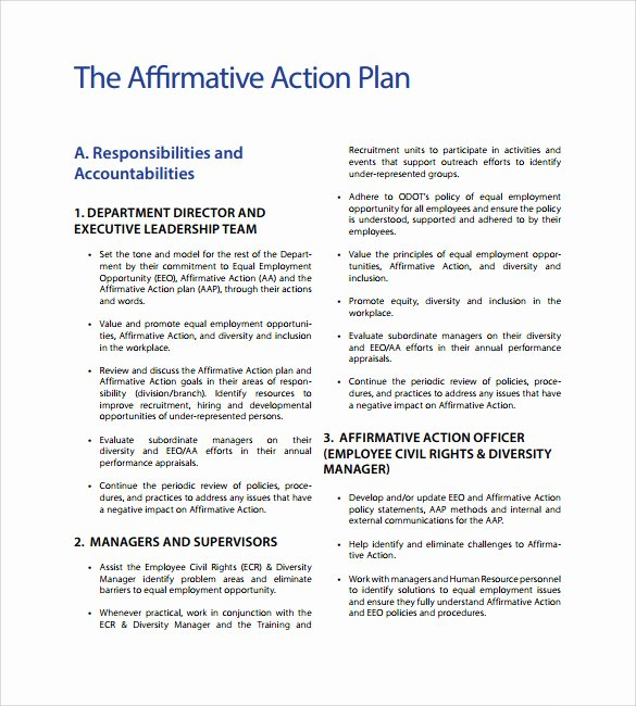 Affirmative Action Plan Template New Sample Affirmative Action Plan 9 Documents In Pdf Word