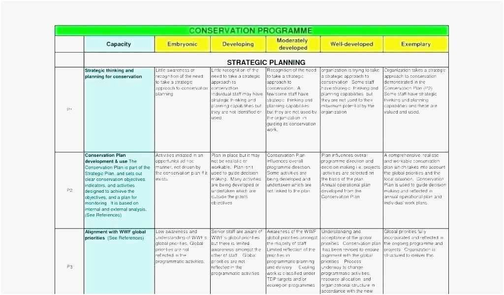 Annual Operating Plan Template Best Of Free Collection 50 Operating Plan Template 2019