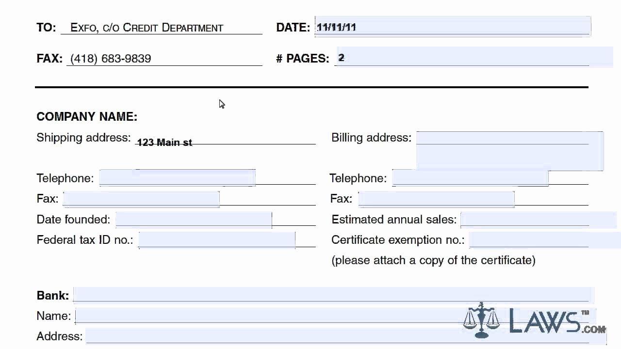 Automotive Credit Application form Elegant Learn How to Fill the Credit Application form