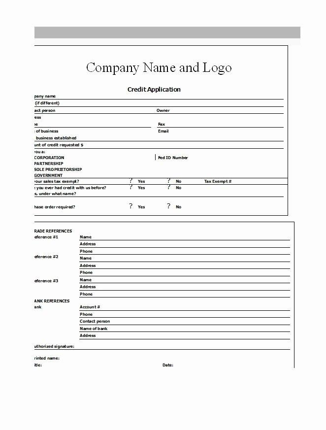 Automotive Credit Application form Inspirational 40 Free Credit Application form Templates & Samples