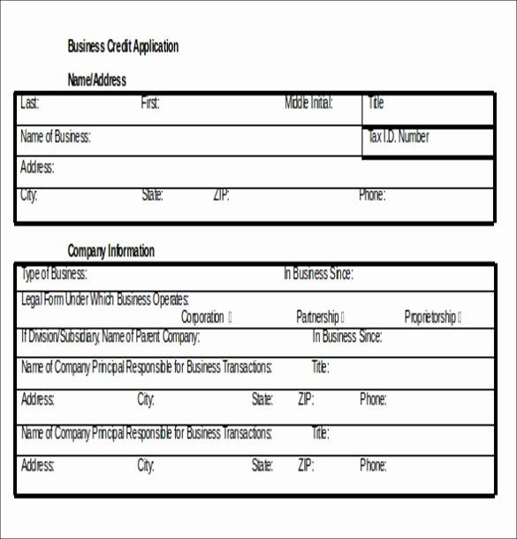 Automotive Credit Application form New Credit Application Template 33 Examples In Pdf Word Google Docs Apple Pages