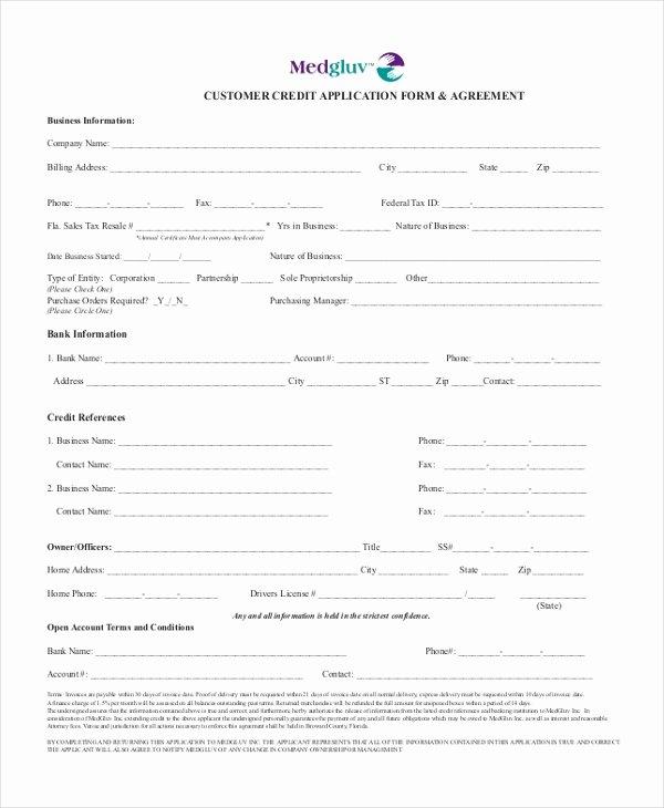 Automotive Credit Application form Unique Free 10 Sample Credit Application forms