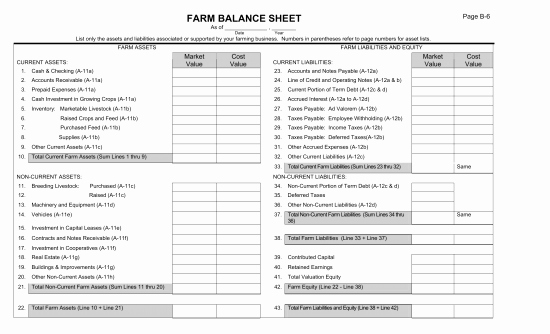 Balance Sheet Example Pdf Elegant Download Farm Balance Sheet Template Excel Pdf Rtf Word