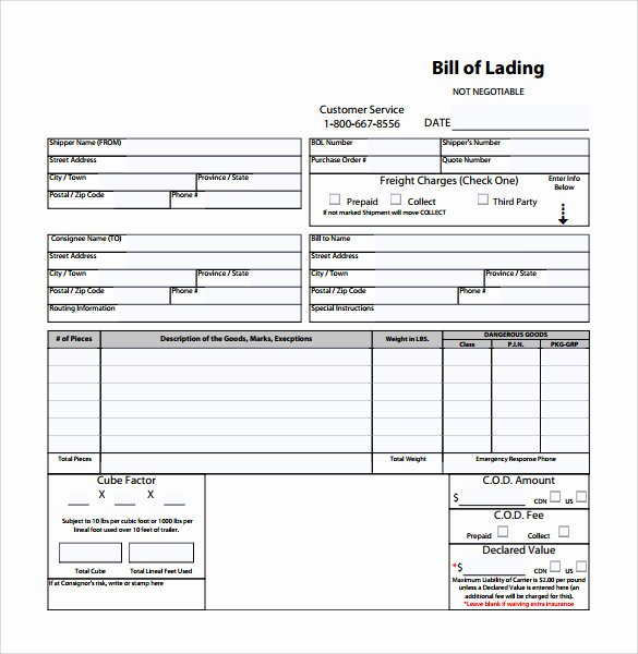 Bill Of Lading Sample Doc Best Of Sample Bill Of Lading 5 Documents In Pdf