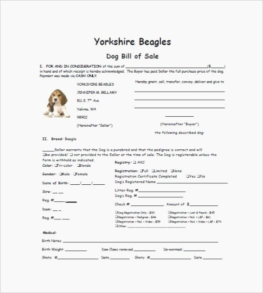 Bill Of Sale for Dog Elegant top 44 Candid Free Printable Puppy Sales Contract