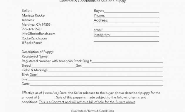 Bill Of Sale for Dog Inspirational is Puppy Sales Receipt