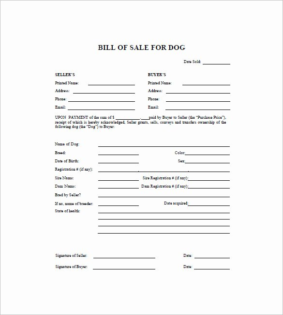 Bill Of Sale for Dog Luxury Dog Bill Of Sale Template – 13 Free Word Excel Pdf