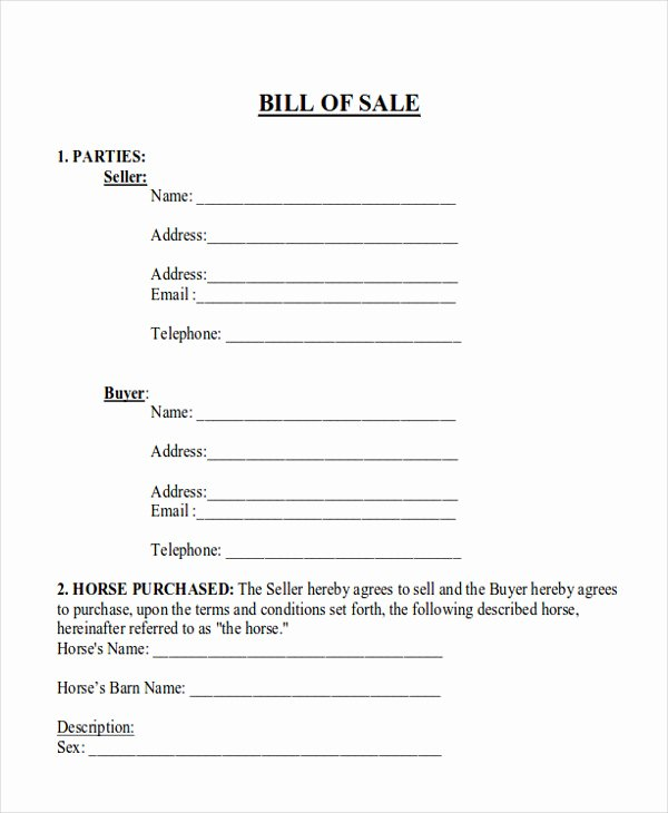 Bill Of Sale for Horse Inspirational 9 Horse Bill Of Sale Examples In Word Pdf