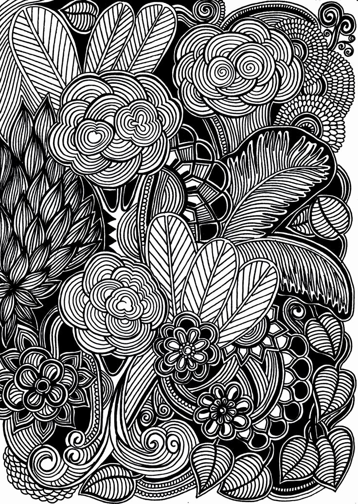 Black and White Drawings Beautiful 170 Best Images About Hand Drawn and Painted Flowers Leaves Trees & Bugs On Pinterest