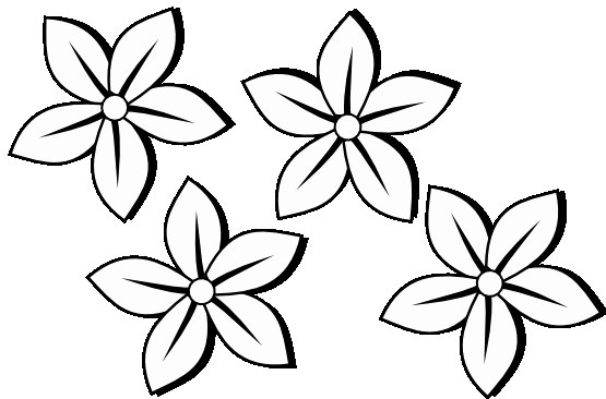 Black and White Flower Drawing Beautiful Black and White Flower Drawing