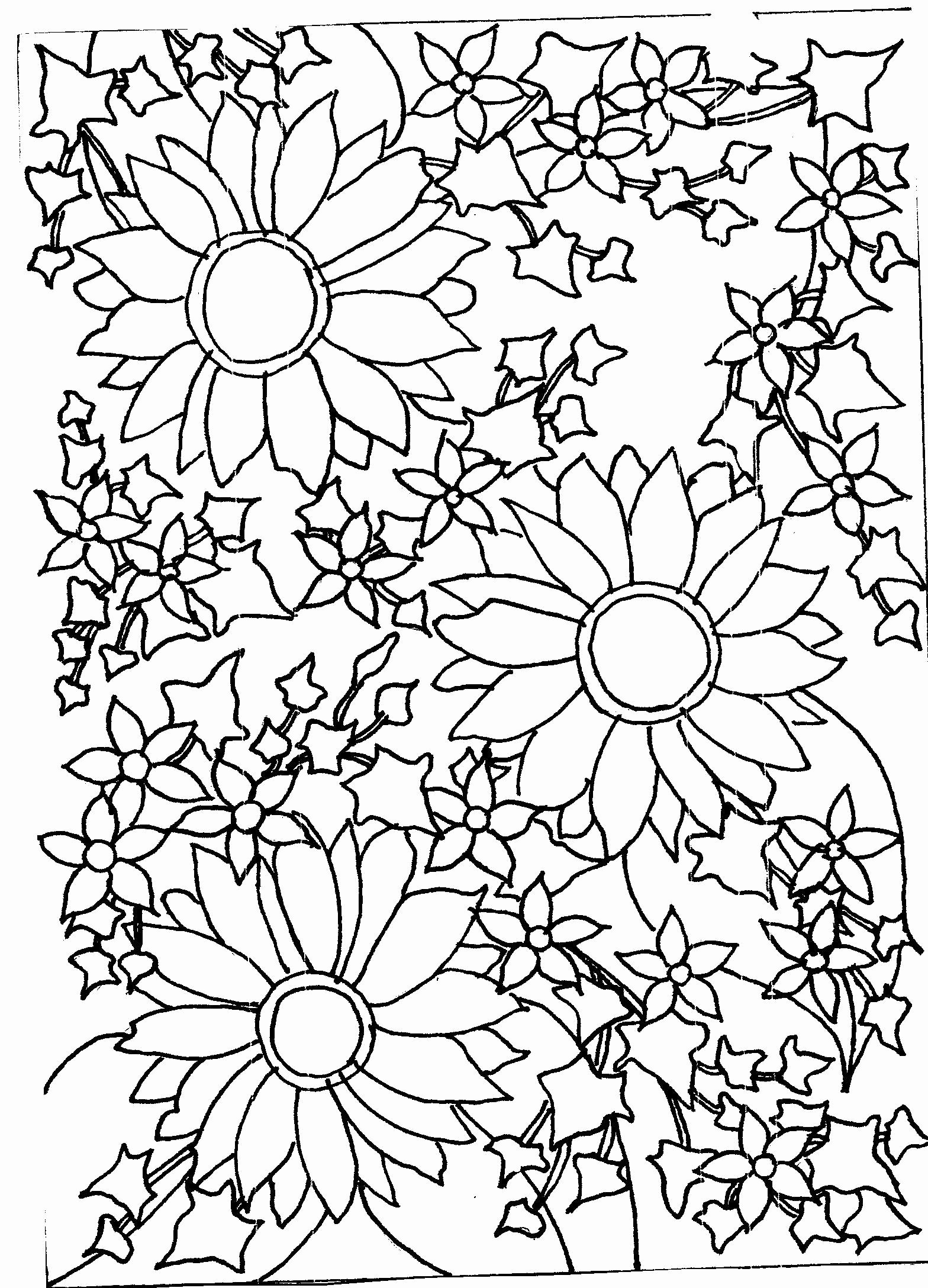 Black and White Flower Drawing Beautiful Sunflowers