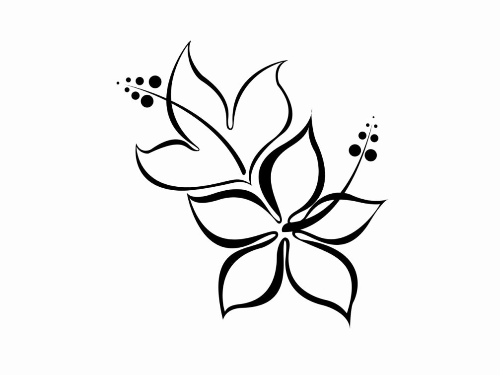 Black and White Flower Drawing Lovely Free Black and White Flower Designs Download Free Clip Art Free Clip Art On Clipart Library