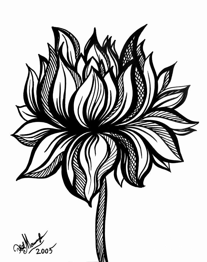 Black and White Flower Drawing Lovely Lotus Flower Black White Drawing Drawing by sofia Metal Queen