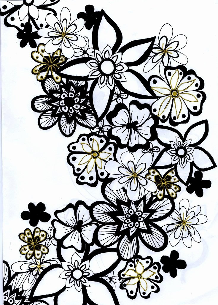 Black and White Flower Drawing Lovely Viewing Gallery for Flowers Black and White Drawing Clipart Best Clipart Best
