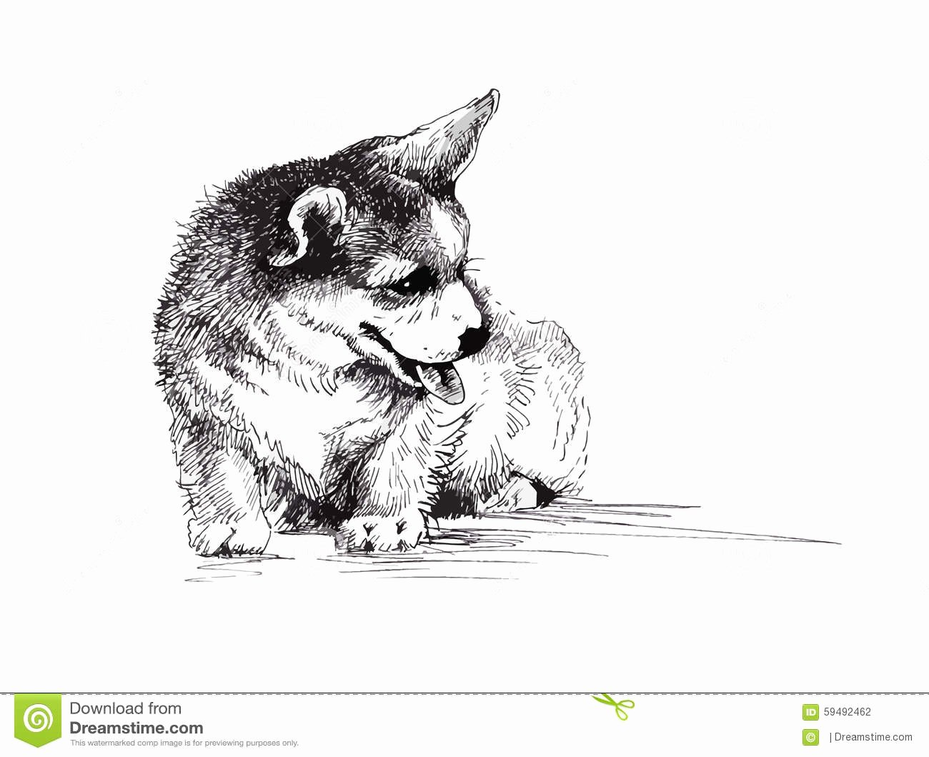 Black and White Illustration Beautiful Puppy Dog Hand Drawn Black and White Illustration Sketch Stock Vector Image