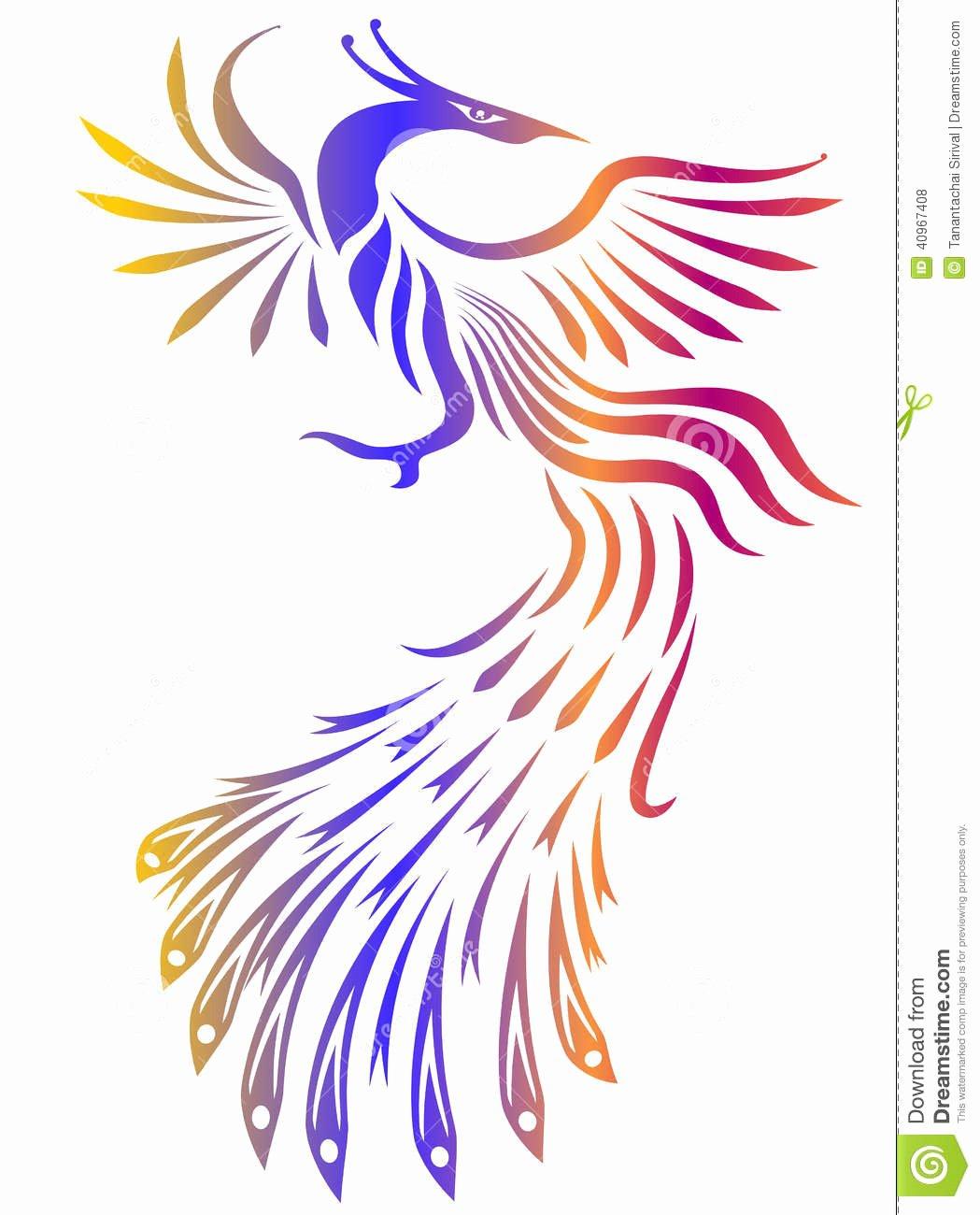 Black and White Illustration Luxury Phoenix Black and White Illustration Stock Illustration Image