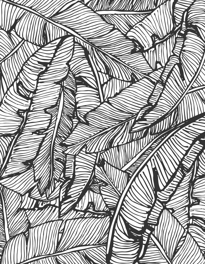 Black and White Pattern Awesome Seamless Pattern Design with Hand Drawn Banana Leaves Vector Illustration Black and White