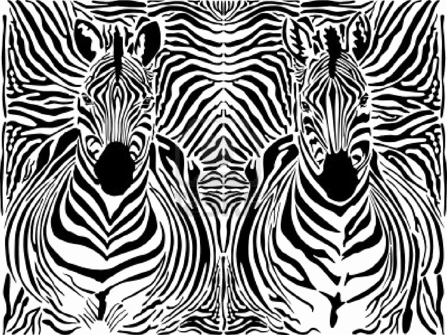 Black and White Pattern Unique In Black and White