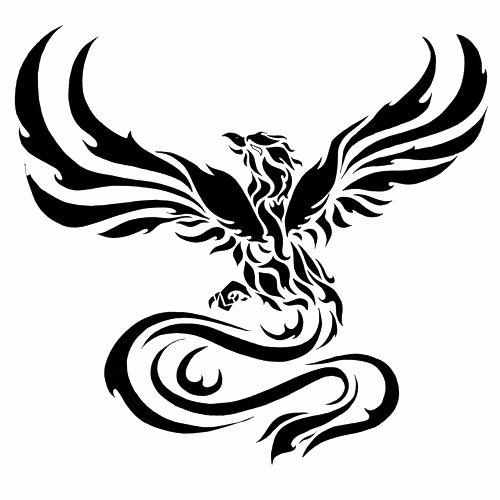 Black and White Phoenix Fresh Best 25 Phoenix Tattoos Ideas On Pinterest
