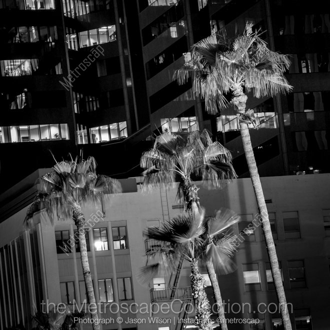 Black and White Phoenix Fresh Phoenix Black and White Skyline and Cityscape Limited Edition Prints Metroscap