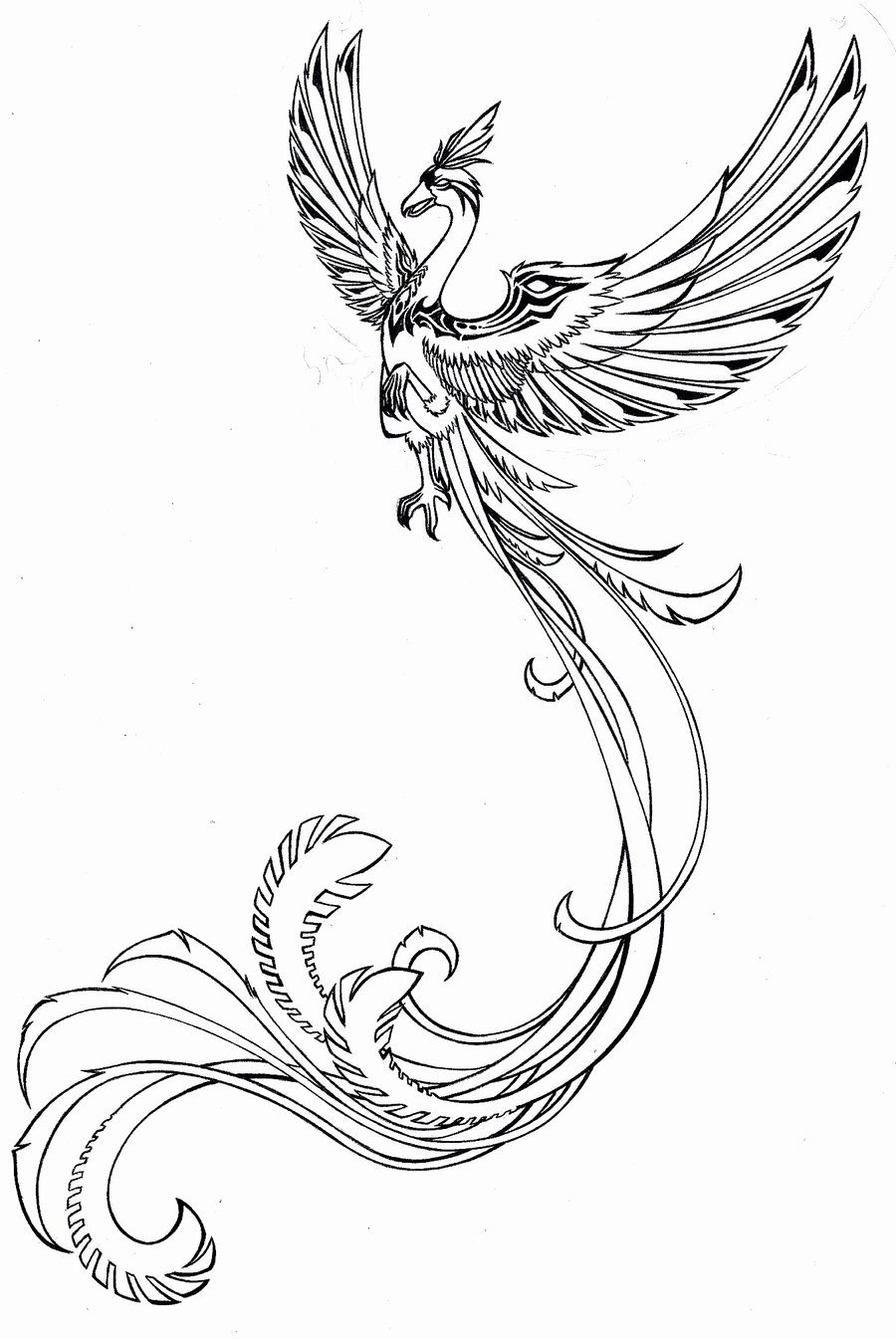 Black and White Phoenix Lovely Phoenix Tattoos for Women