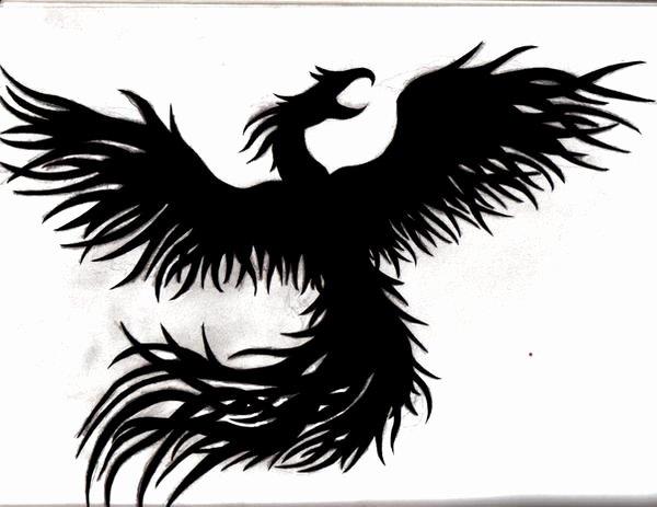 Black and White Phoenix Lovely Scirocco Central • View topic Vw Scirocco Rs Quattro 2 5 Tfsi Dq500 Haldex4