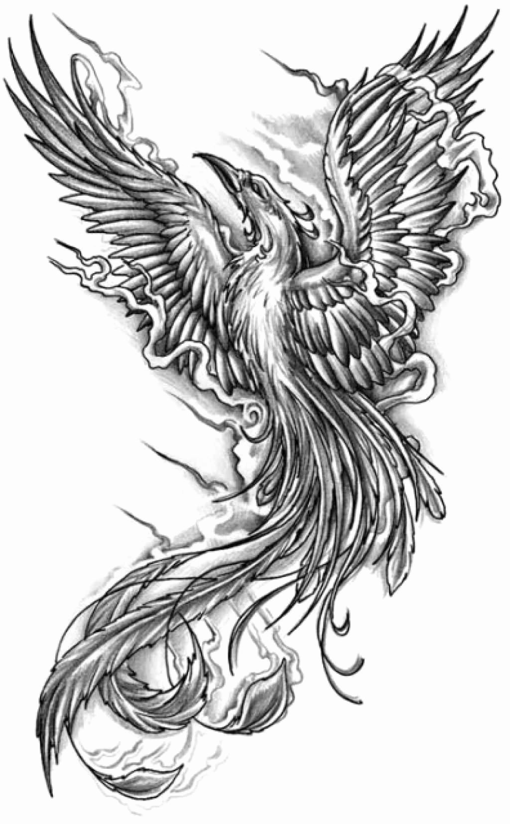 Black and White Phoenix New Black and Grey Flying Phoenix Tattoo Design