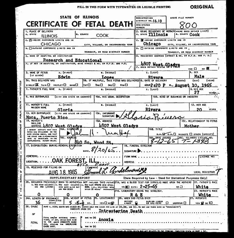 Blank Death Certificate Template Fresh 30 New Fetal Death Certificate Sa Pro Literacy