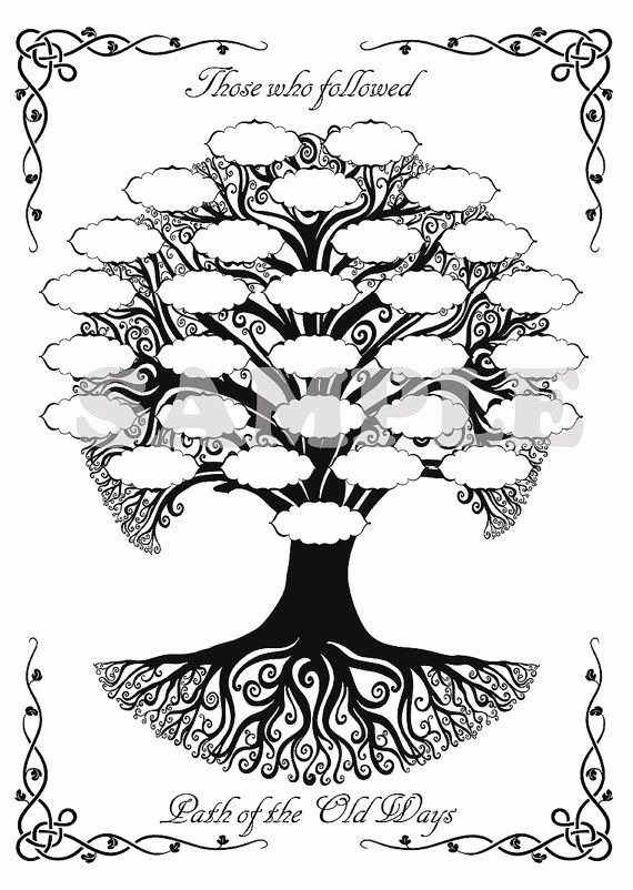 "Blank Family Tree Book Awesome Celtic Family Tree for Your Book Of Shadows == I Want to Make A ""tree Of Wisdom"" to Show the"